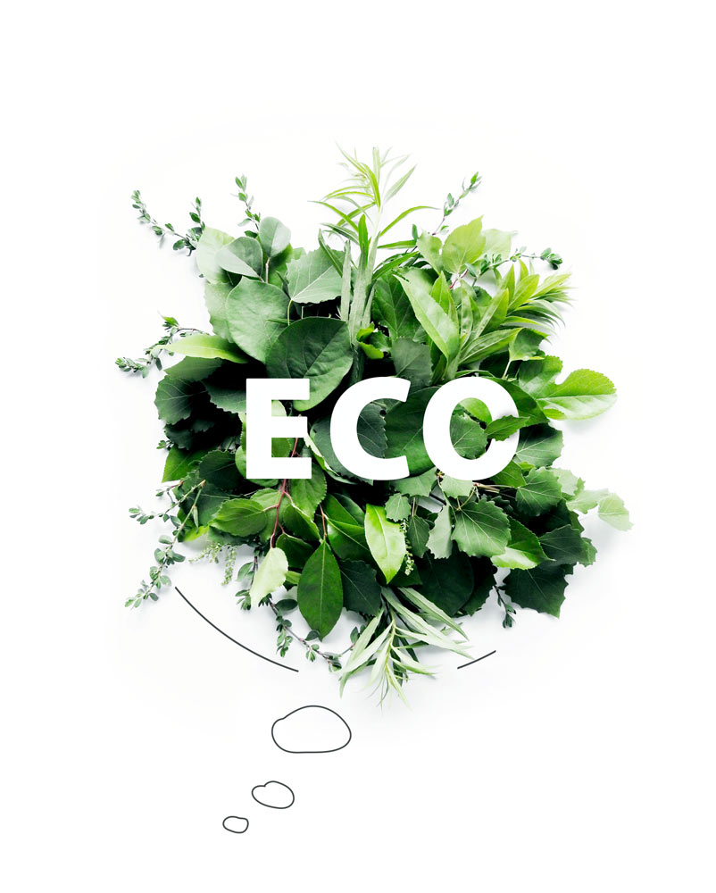 header-servizi-ecologica